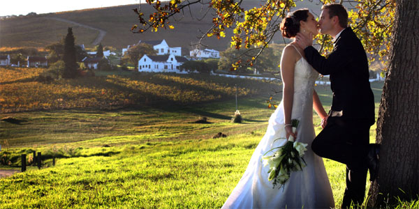 Wedding DVD and Video Download